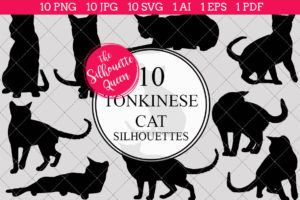 Tonkinese Cat Silhouettes Clipart Clip Art(AI