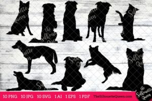Border Collie dog svg