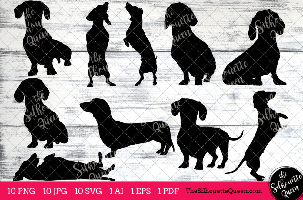 Dachshund dog svg