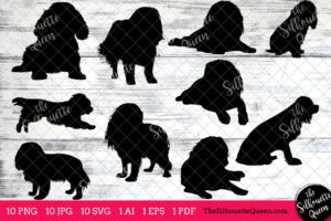 Cavalier King Cocker Spaniel dog svg