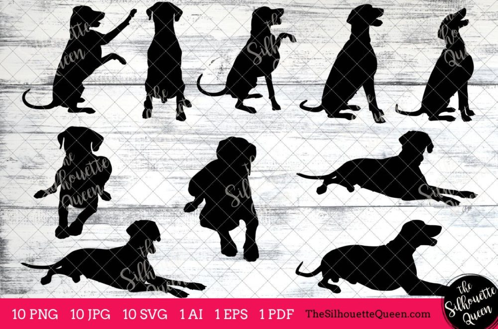 Doberman dog svg