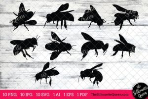 Bee Insect svg