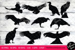 Condor Bird SVG Files Bundle