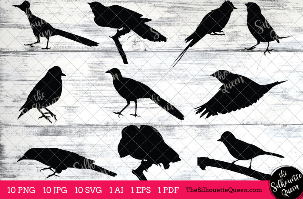 Cuckoo Bird SVG Files Bundle