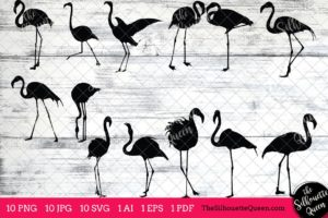 Flamingo Bird SVG Files Bundle