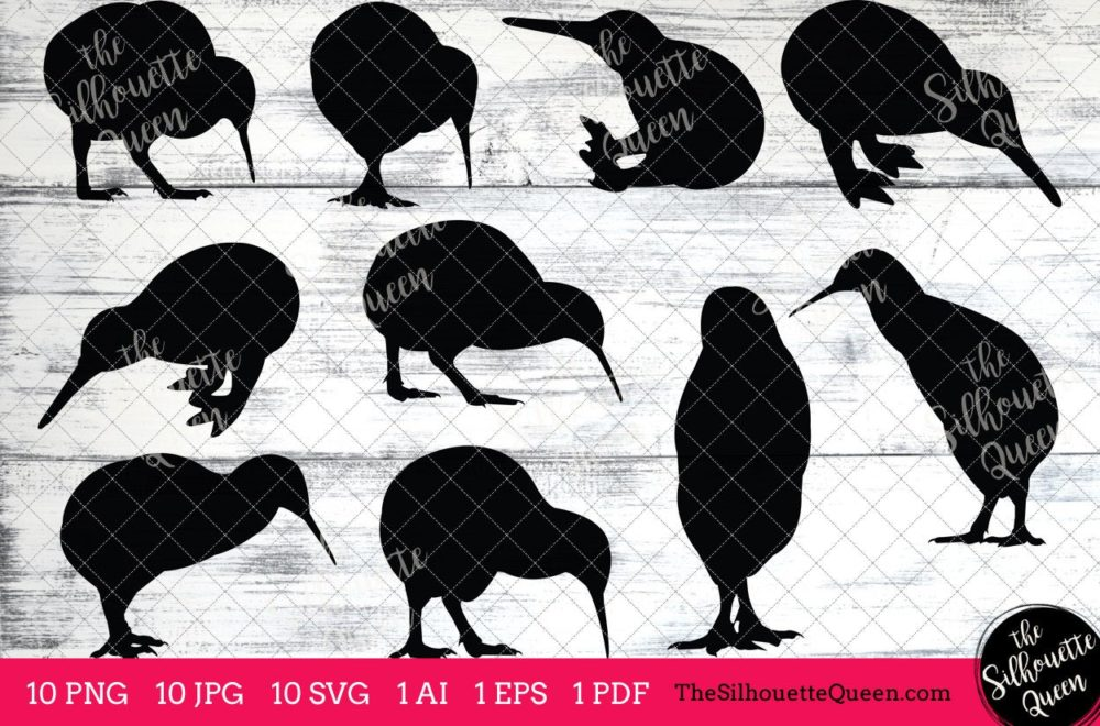 Kiwi Bird SVG Files Bundle