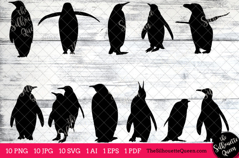Penguin Bird SVG Files Bundle