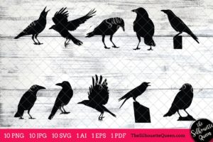 Crow Bird SVG Files Bundle