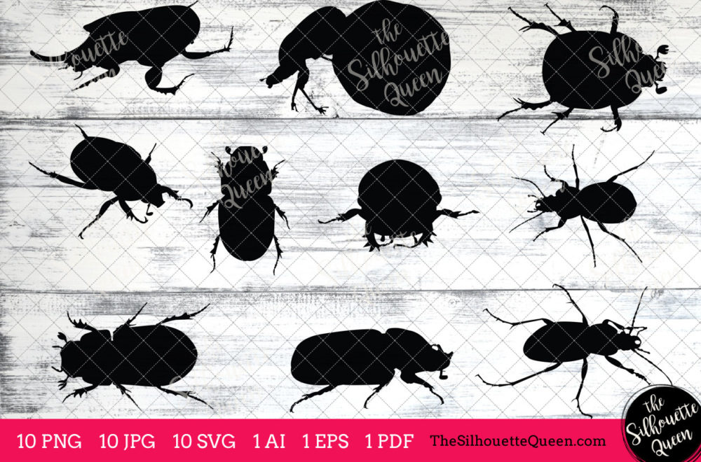 Dung  Beetle Insect svg