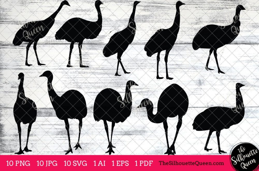 Emu Bird SVG Files Bundle