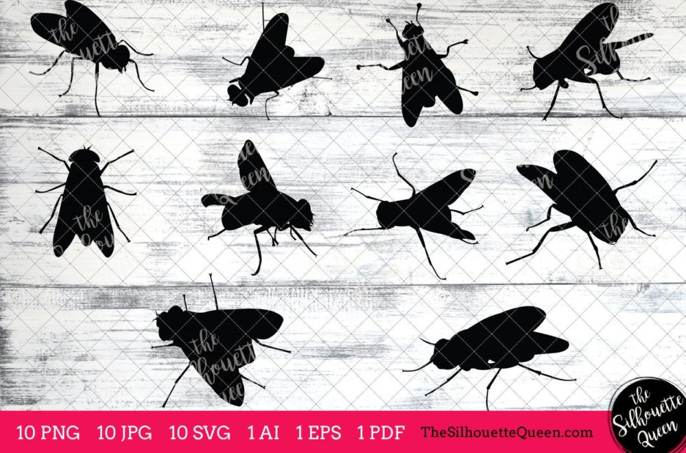 Fly Insect svg