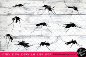 Mosquito Insect svg