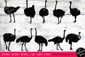Ostrich Bird SVG Files Bundle