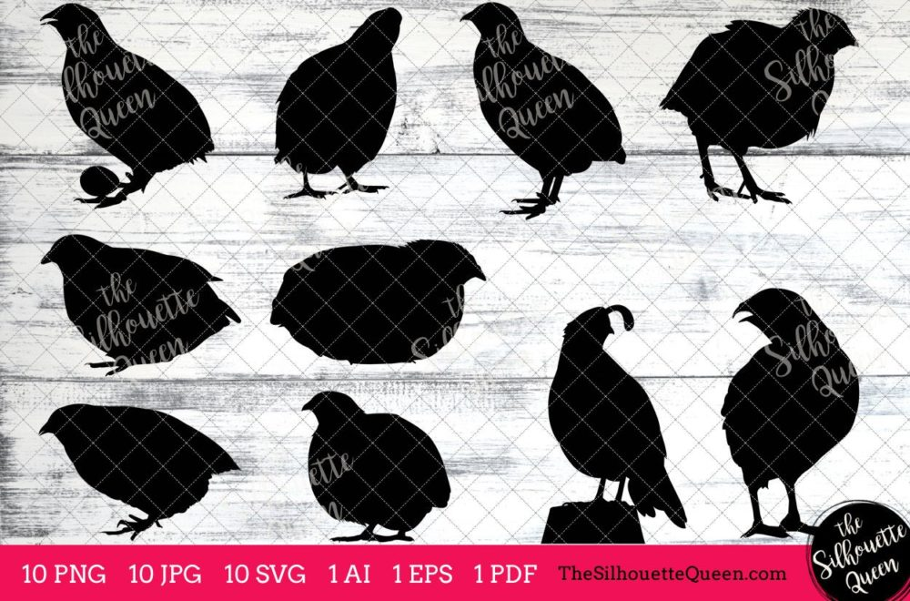 Quail Bird SVG Files Bundle