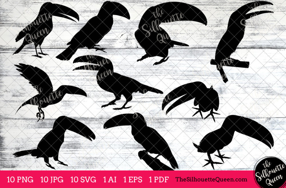 Toucan Bird SVG Files Bundle