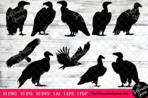 Vulture Bird SVG Files Bundle