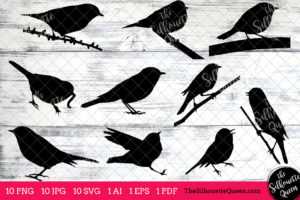 Warbler Bird SVG Files Bundle