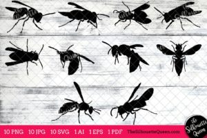 Wasp Insect svg
