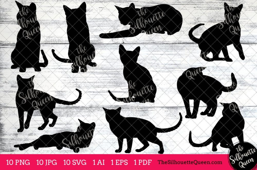 Tonkinese Cat Svg
