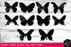 Butterfly Insect svg