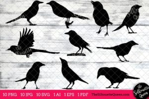 Magpie Bird SVG Files Bundle