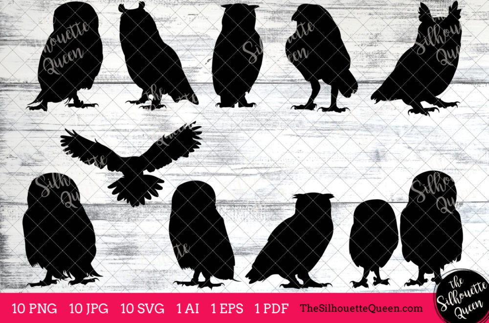 Owl Bird SVG Files Bundle