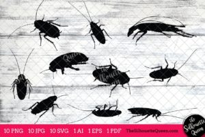 Cockroach Insect svg
