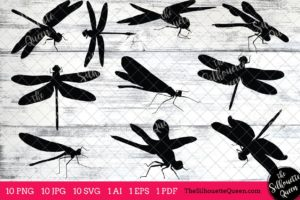 Dragon Fly Insect svg