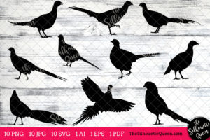 Pheasant Bird SVG Files Bundle