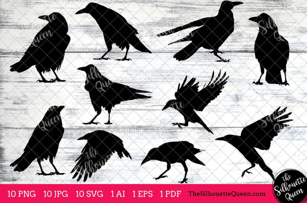 Rook Bird SVG Files Bundle