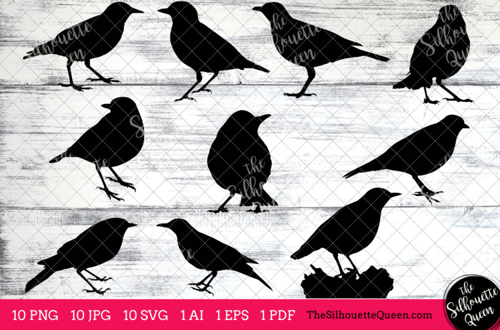 Thrush Bird SVG Files Bundle