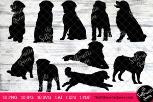 Burnese Mountain dog svg