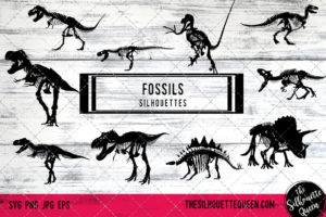 Fossils of Dinosaur SVG