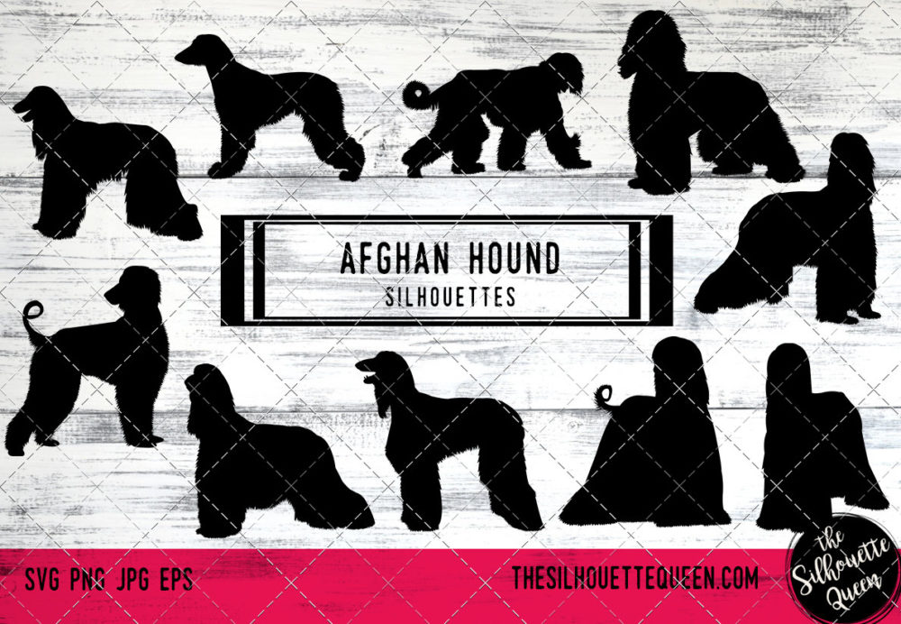 Afghan Hound dog svg