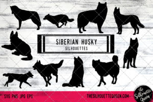 Siberian Husky dog svg