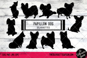 Papillon Dog dog svg