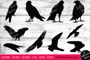 Falcon Bird SVG Files Bundle