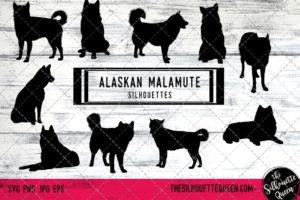 Alaskan Malamute dog svg