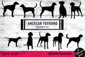 American Foxhound dog svg