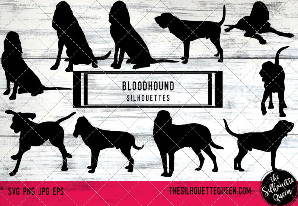 Bloodhound dog svg