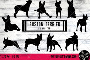 Boston Terrier dog svg