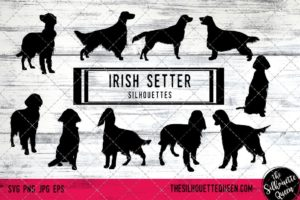 Irish Setter dog svg