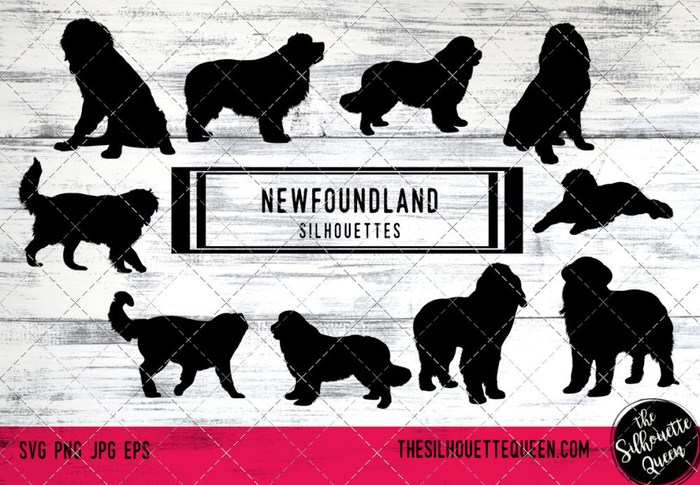 Newfoundland dog svg