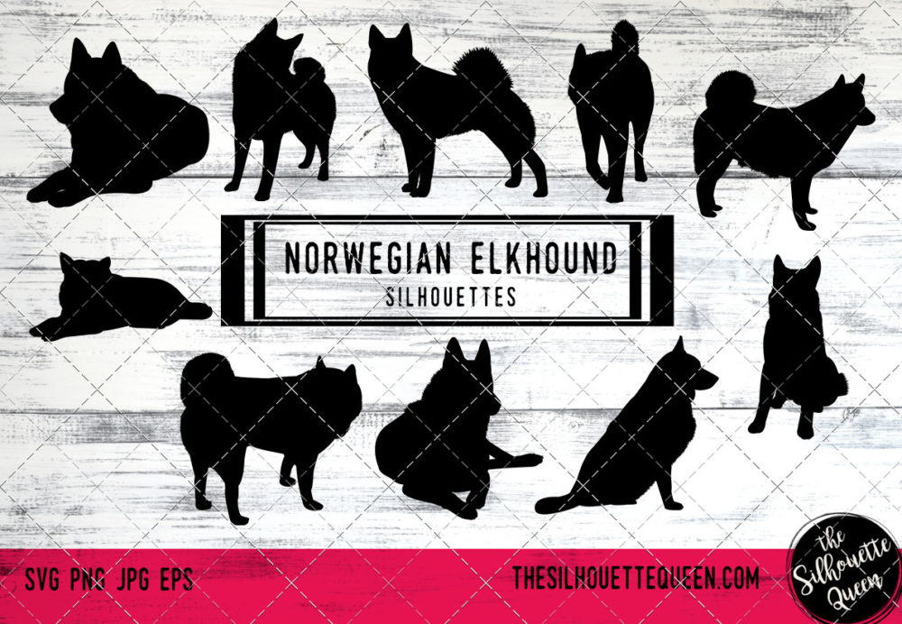 Norwegian Elkhound dog svg