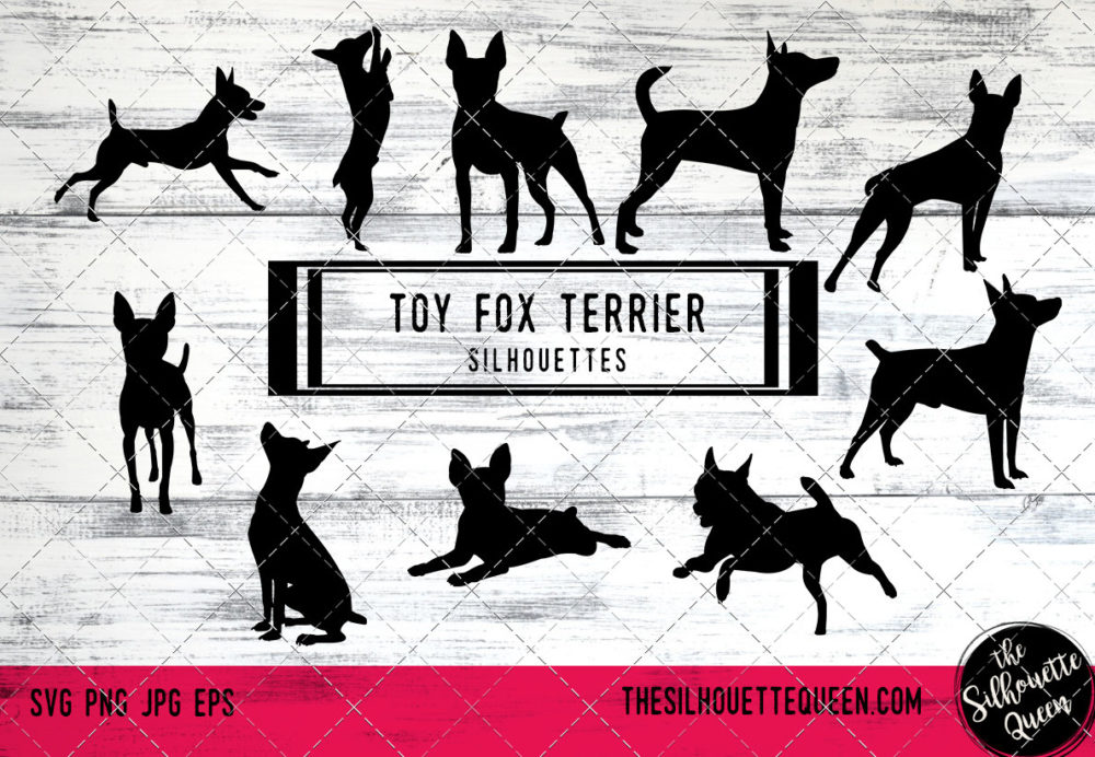 Toy Fox Terrier dog svg