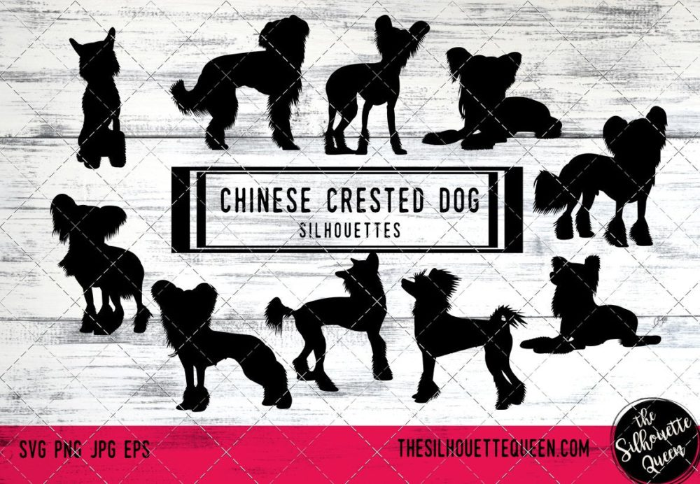 Chinese Crested dog svg