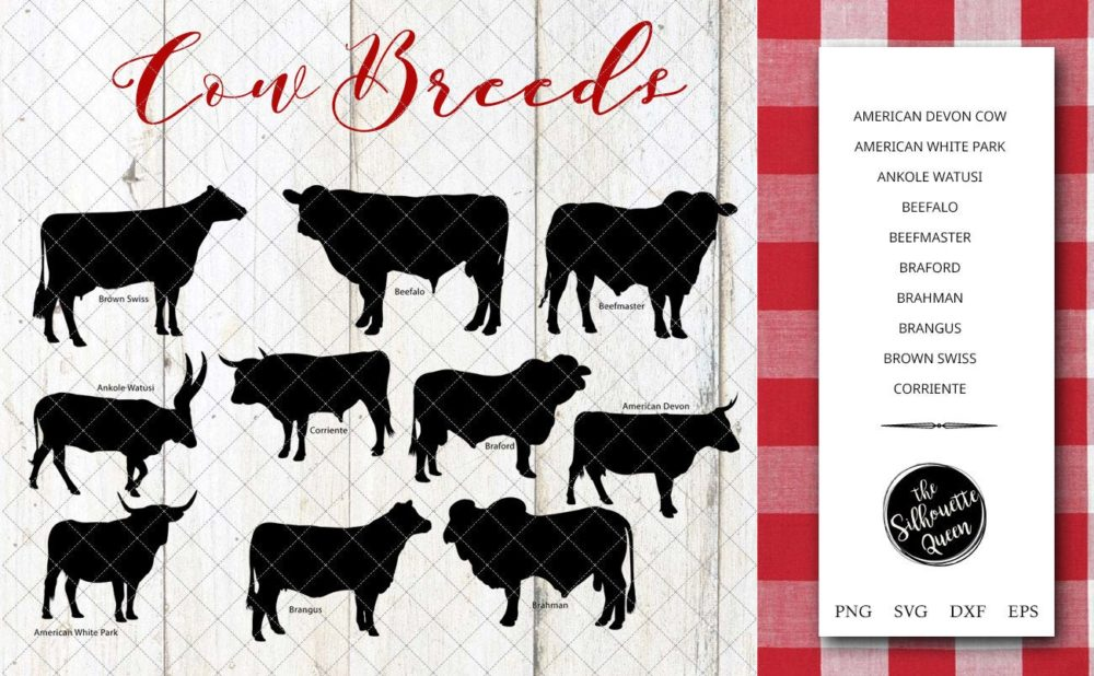 Cow Breeds Silhouette Vector svg file