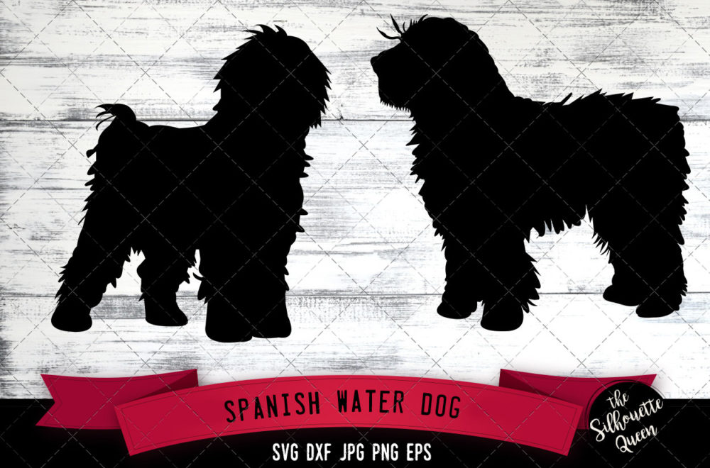 Spanish Water  SVG Files