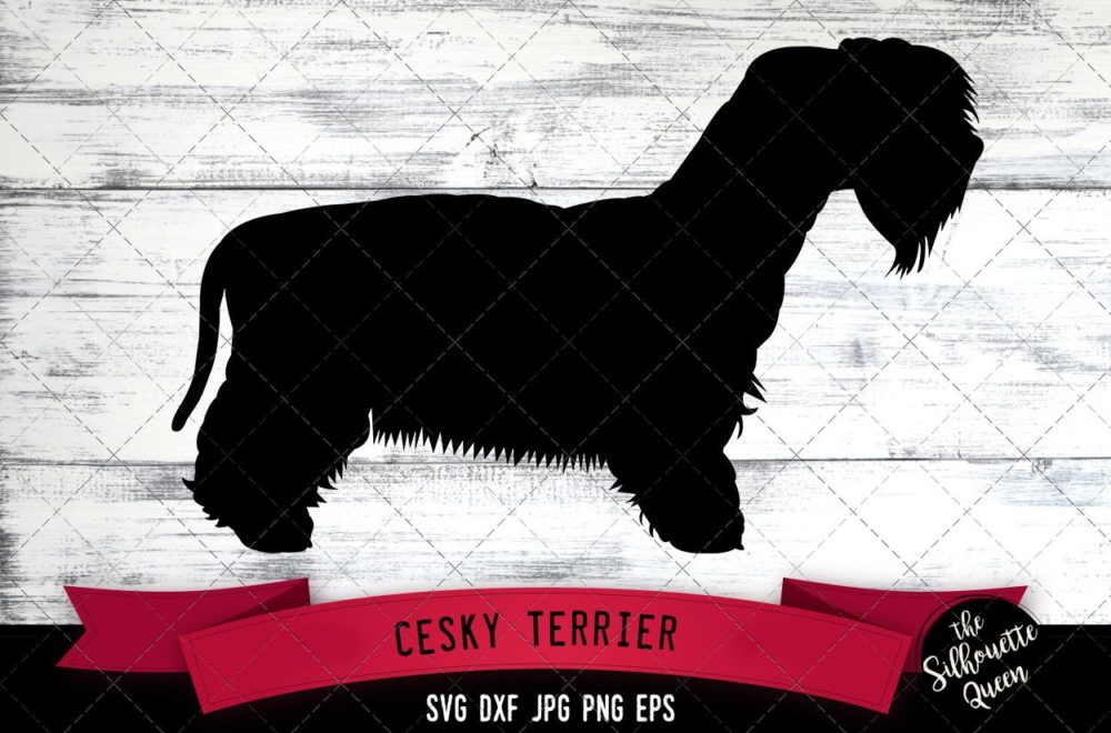 Cesky Terrier SVG Files