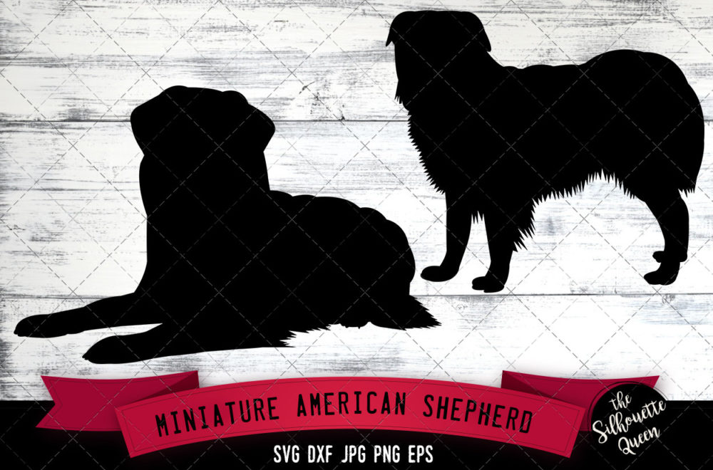 Miniature American Shepherd SVG Files
